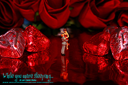 Happy Valentine's Day  - While you were sleeping...  Photography by Lon Casler Bixby - Copyright - All Rights Reserved - www.whileyouweresleeping.photography/
